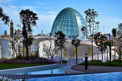Official Tour Guide in Ronda, Málaga, Marbella - Orchidarium Estepona