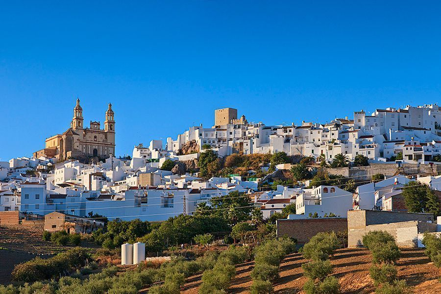 Official Tour Guide in Ronda, Málaga, Marbella -Olvera