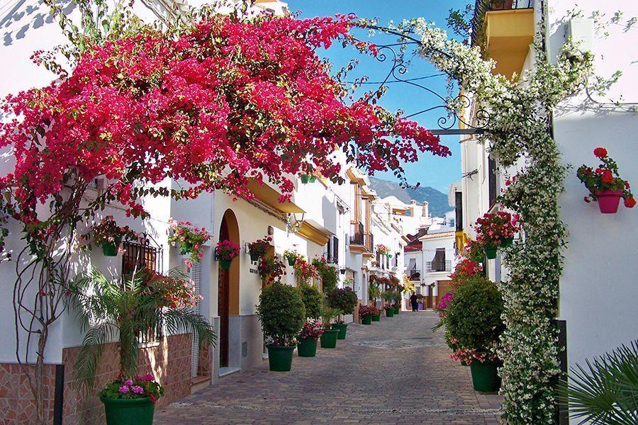 Guía turístico en Estepona - Calle de Estepona